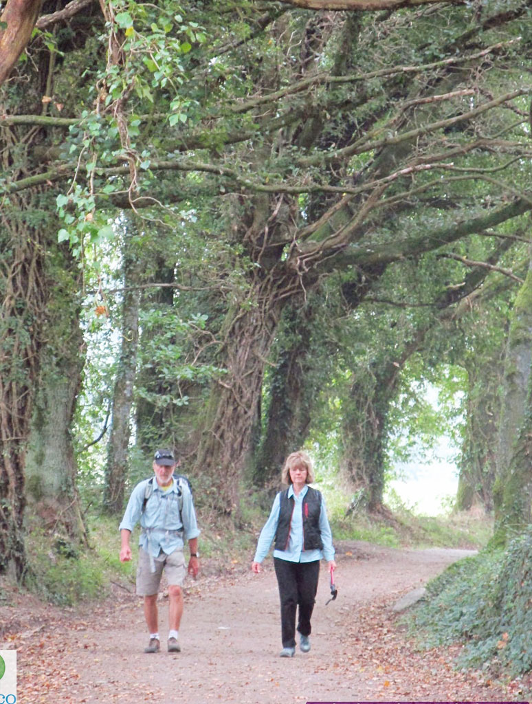 Camino de Santiago - September 21, 2015