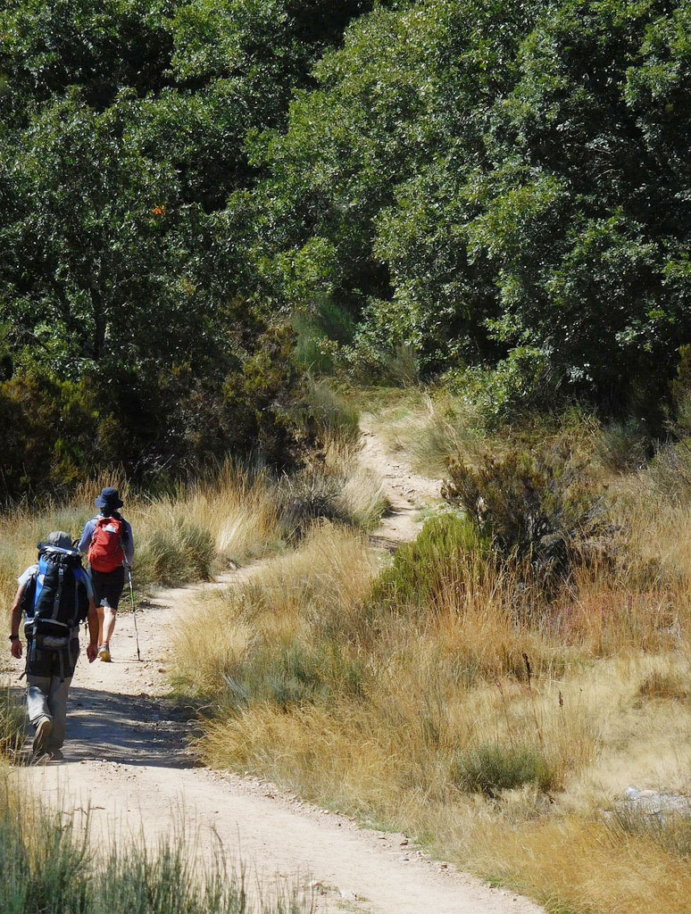 Camino de Santiago - September 7, 2015