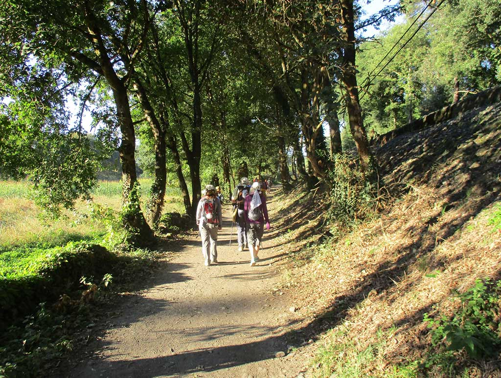 Camino de Santiago Tour - October 3, 2018